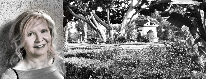 14 Balboa Park Tree_pp copy